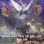 dang-bao-tro-se-den